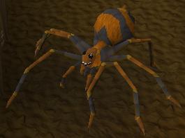 Aranha febre