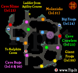 osrs how to get to molanisk
