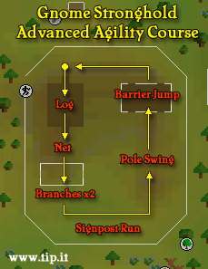 Gnome Stronghold Advanced Agility Course