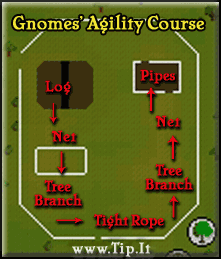 Gnomes' Agility Course