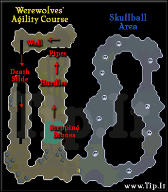 Werewolves' Agility course