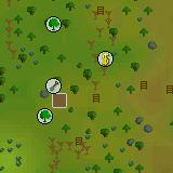 Tree Farm Patch5
