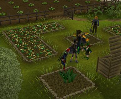 Newp2p Farming Guia