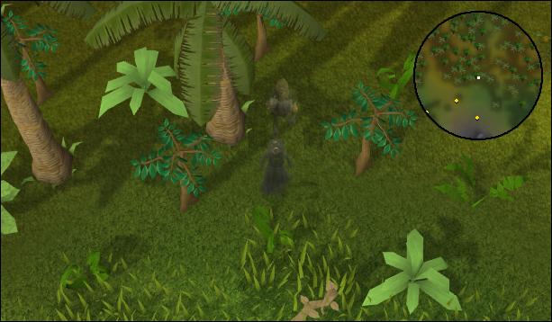 Selva Espada sombra