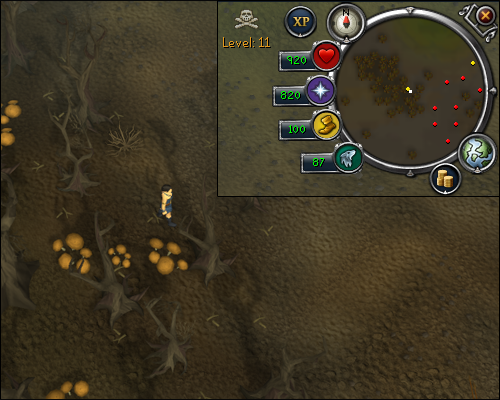 runescape how to go to the arc