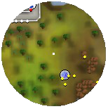 Tt Elite Compass Castle Wars