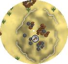 Tt Elite Pedreira Compass